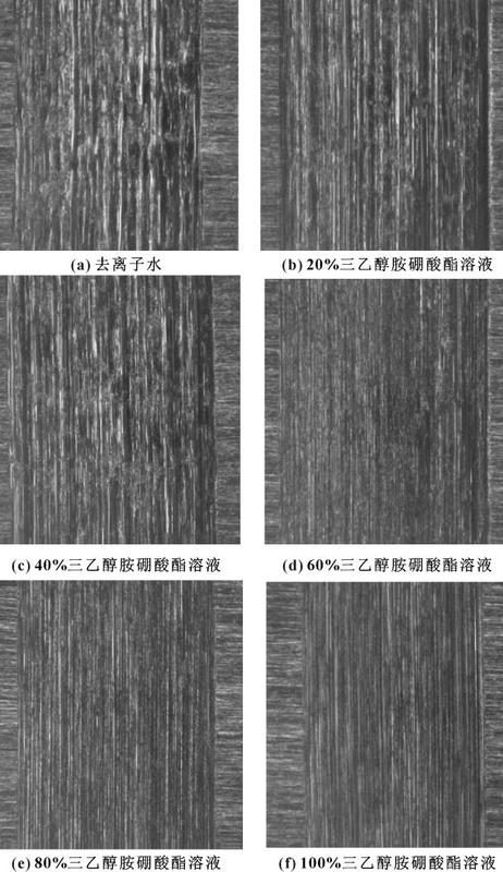 图8 不同体积分数三乙醇胺硼酸酯水溶液润滑下的磨痕形貌.jpg