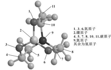 图10 三乙醇胺硼酸酯 3D 分子结构.jpg